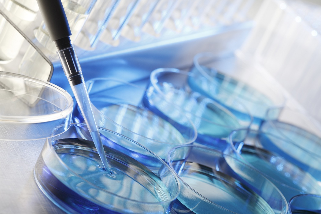 Ensayos Toxicológicos A Través De Métodos Alternativos